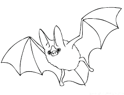 Bats Coloring Pages Bat Free Printable Cute Betterfor