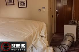 Image result for heat treatment for bed bugs in hotels