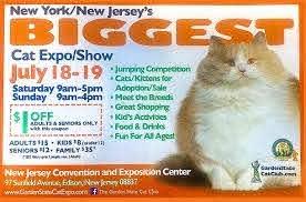 2020 Biggest Cat Expo/Show