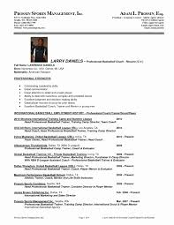 Luxury Professional Resume Service Dallas Model Documentation