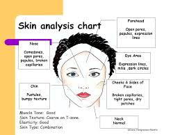 Skin Analysis Chart Aim Of Todays Lesson To Perform Skin Analysis Ppt Video