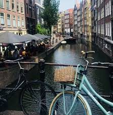 Founded in 1935, holland has been a leader in progressive and comprehensive solutions spanning the rail industry for 85 years. Tipps Furs Fahrradfahren In Holland Radbonus Com