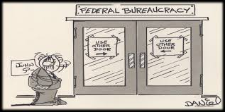 The Executive Branch and The National Bureaucracy Part III