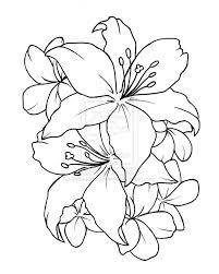outline lily flower tattoos design rh tattoostime 3d water lily tattoo drawings tiger lily tattoo