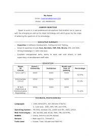 Portal Developer Sample Resume Basic Format Of Resume Occupational
