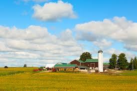 farm insurance options