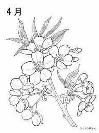 4月やまざくらの花の塗り絵の下絵画像