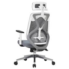 high tech office chair. Dickson High-tech White Office Mesh Chair Racing Gaming And Home Use High Tech I
