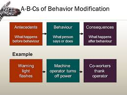perception and learning in organizations ppt video online  a b cs of behavior modification