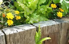 Small Picture Raised Vegetable Garden In Nz The Garden Inspirations