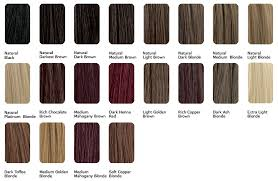 Sample Hair Colors Chart Color Sample Honey Blond Platinum Mix Sophie Hairstyles