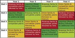Crop Rotation Chart Vegetable Gardening Crop Rotation Chart Crop Rotation Organic Gardening Tips