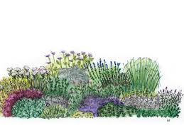 Small Picture Herb Garden Design Plan HGTV