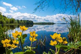 Toukokuu 2019 | Sää | yle.fi | Natural landmarks, Landmarks, Lapland