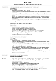 Download Cash Application Specialist Resume Sample as Image file