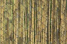 Privacy Chain Link Fences View In Gallery Bamboo Fencing Adds