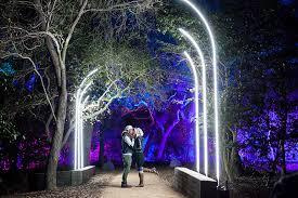 enchanted light show shines at descanso gardens
