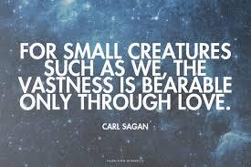 Carl Sagan Love Quote Delectable Quote Of Carl Sagan QuoteSaga