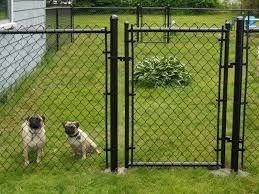 black chain link fence gate. Delighful Fence Gates Chain Link Fence For Dogs For Black Chain Link Fence Gate A
