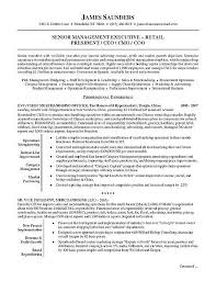 Executive Resume Samples Magnificent Retail Executive Resume Examples Pinterest Sample Resume