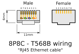 rj45 male wiring diagram images on hyundai car radio stereo clipart rj45 connectors