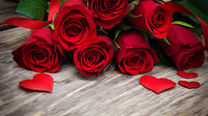 cool red roses