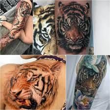 тату тигр энергия огня и грация хищника татуировкси с тигром