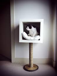 creative modern cat bed  editeestrela design
