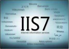 How to restrict Users from accessing Default IIS page and Virtual ...