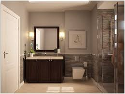 Contemporary SpaLike Bathrooms In DemandSpa Bathroom Colors
