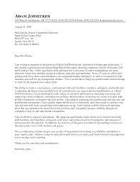 Sample Of Professional Letter Resume Professionaler Lettersimple Letter Application How