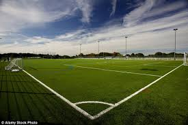 british football chiefs are being urged to investigate claims that artificial pitches are a cancer risk