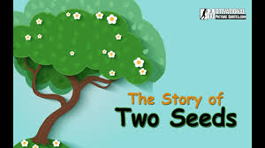 Motivational Short Story Of Two Seeds Best Inspirational Story About Positive Thinking For Kids