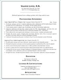 Professional Nursing Resume Examples Resume Example
