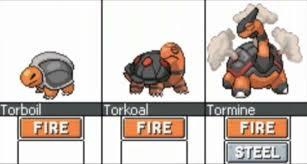 Torkoal Evolution Ideas Pokemon New Pokemon My Pokemon