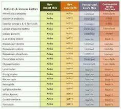 Infant Formula Comparison Chart Comparison Chart Raw Milk Breastfeeding Whey Protein