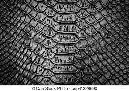 Snake Skin Pattern Custom Black Snake Skin Pattern Texture Background