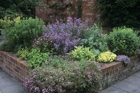 Small Picture Evergreen Herb Garden Designs Evergreen Herb Gardens