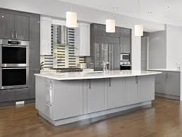 Double Swinging Kitchen Doors Grey Kitchen Cabinets With White Appliances White Spray Paint Wood