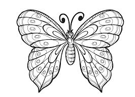 Nieuw Kleurplaat Van Een Vlinder Krijg Duizenden Kleurenfotos Van