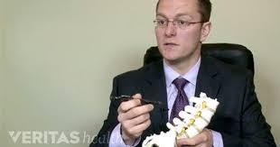 Whats A Facet Facet Joint Blocks Video