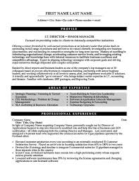 It Manager Resume Template