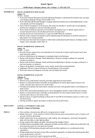 Email Marketing Resume Sample Email Marketing Resume Samples Velvet Jobs 8