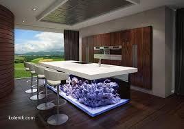 Large Aquarium Tank, Modern Kitchen Design Idea