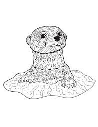 Small Picture 39 best Otter Romp images on Pinterest Coloring pages Otters