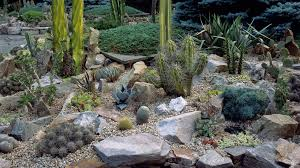 Small Picture 6 Best Rock Garden Ideas Yard Landscaping with Rocks