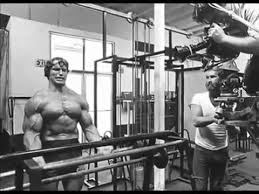 Arnold Gym Workout Chart Arnold Bodybuilding Routine Arnold Schwarzeneggers