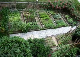 beautiful vegetable garden design