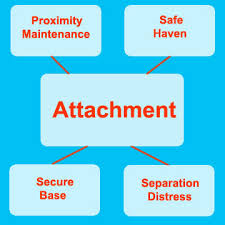 attachment theory essay bowlbys attachment theory alevel  mary ainsworth attachment theory essay