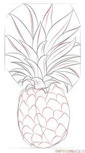 pineapple drawing. how to draw a pineapple step by step. drawing tutorials for kids and beginners. l
